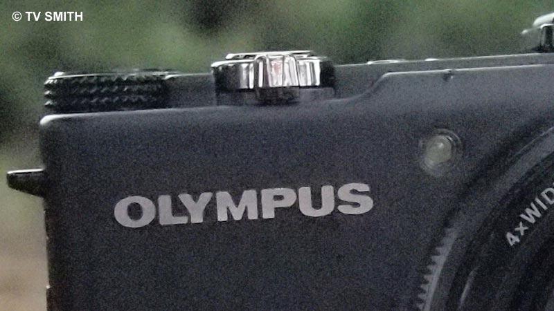 Olympus Pen E-PL2, ISO 3200, f 4.5, 1/640 sec - 100% crop from original