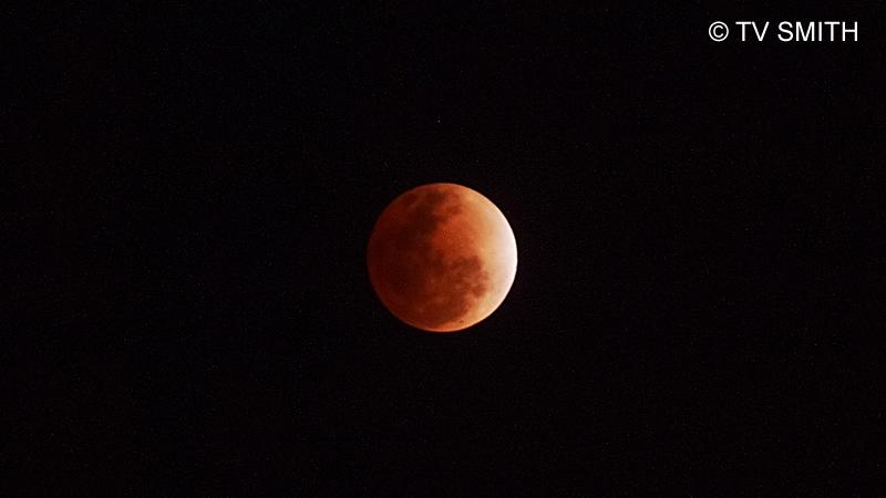 Orange-Red Moon