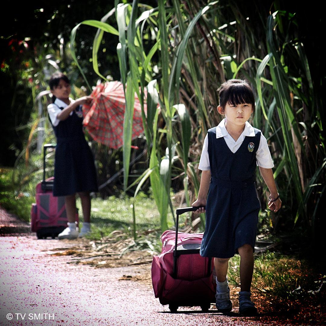 Little Stewardesses