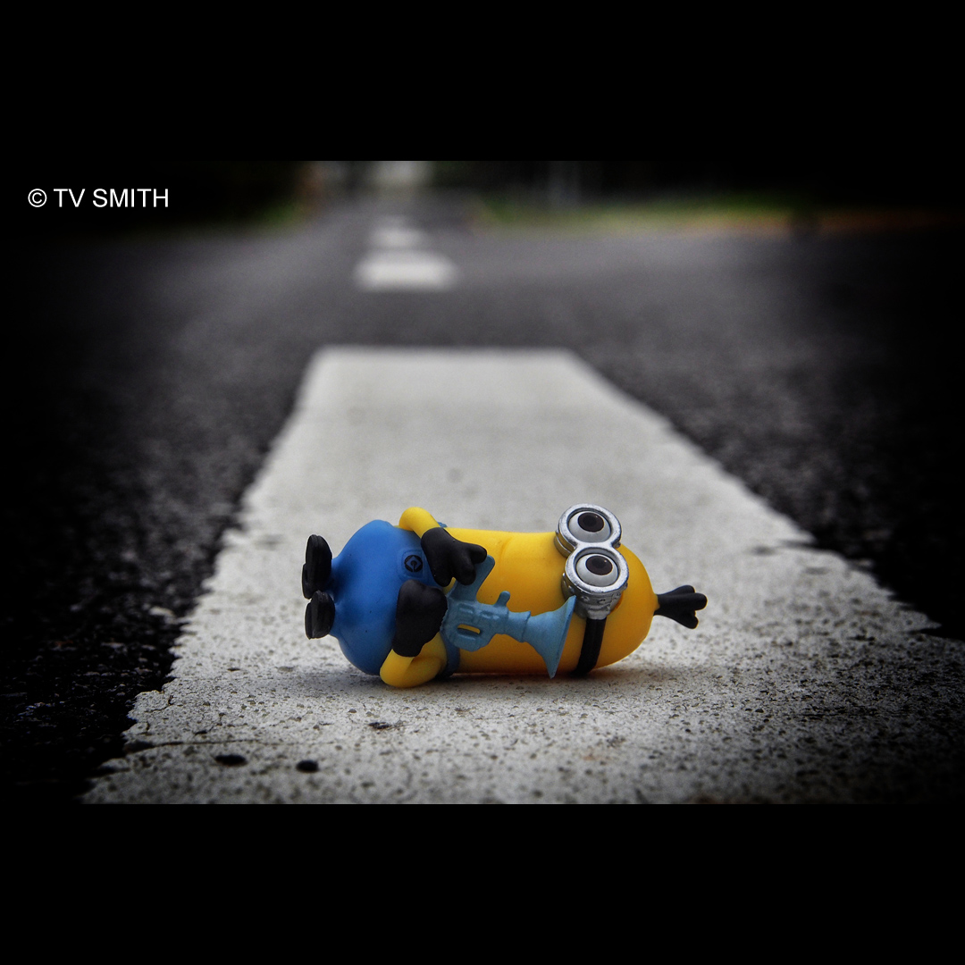 Thinking About Life - Despicable Me 2
